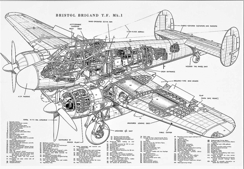 bristol-brigand-mk1-cutaway