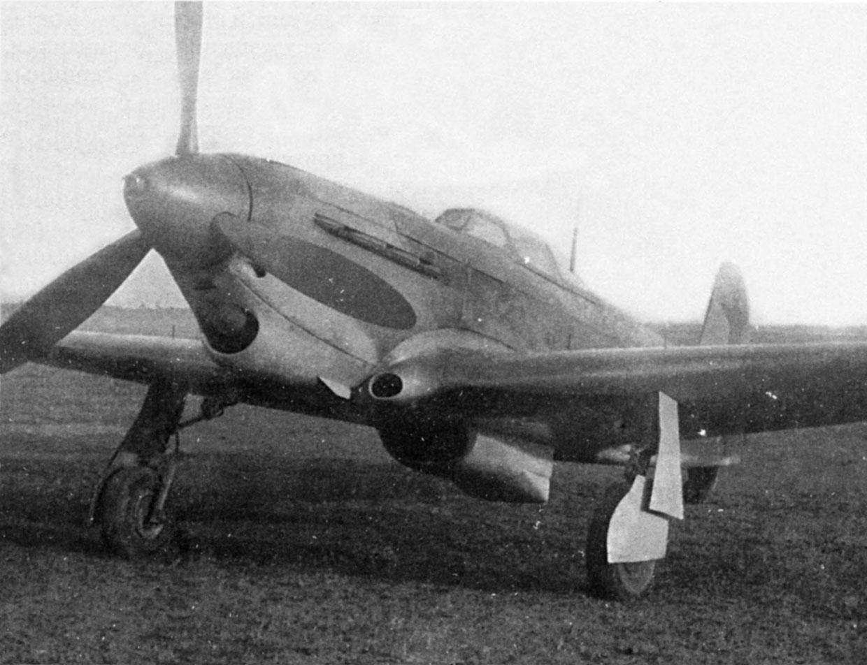 Yak1b-M-106-sn-3299