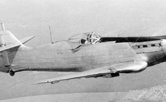 Loire Nieuport LN-161, una oportunidadperdida